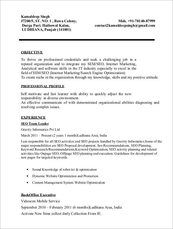11 SEO Resume Templates  DOC