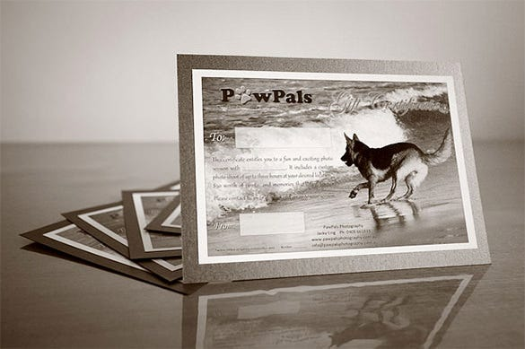 pet photography gift certificate template