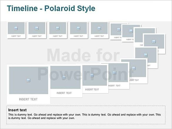 polaride project timeline editable template example