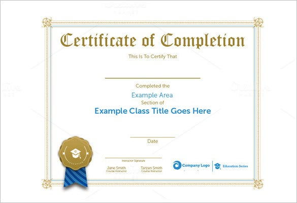 Professional Certificate Template   Free Word Format Download