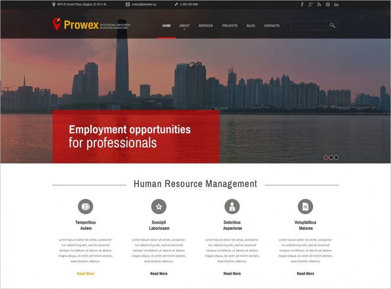 professional employment wordpress theme 788x583