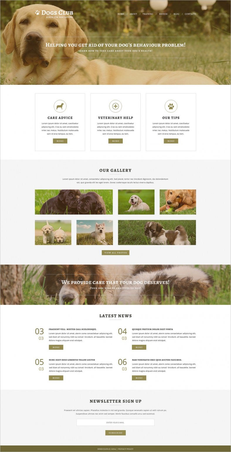 Professional HTML5CSS3 Animals Pets Joomla Template