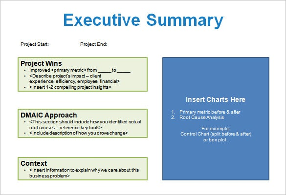 Project Storyboard Template Free Word Excel PDF PPT Format - Project summary template excel