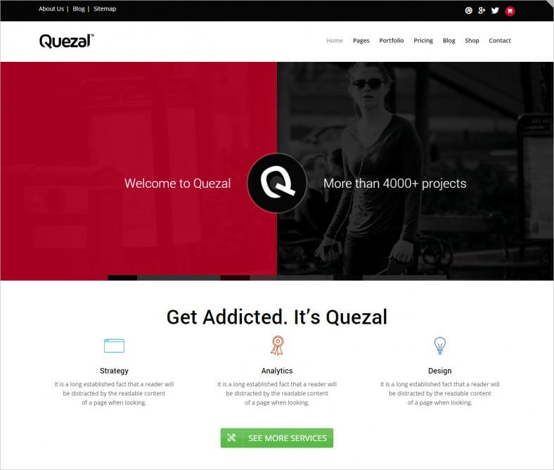 quezal software responsive wordpress theme 788x668