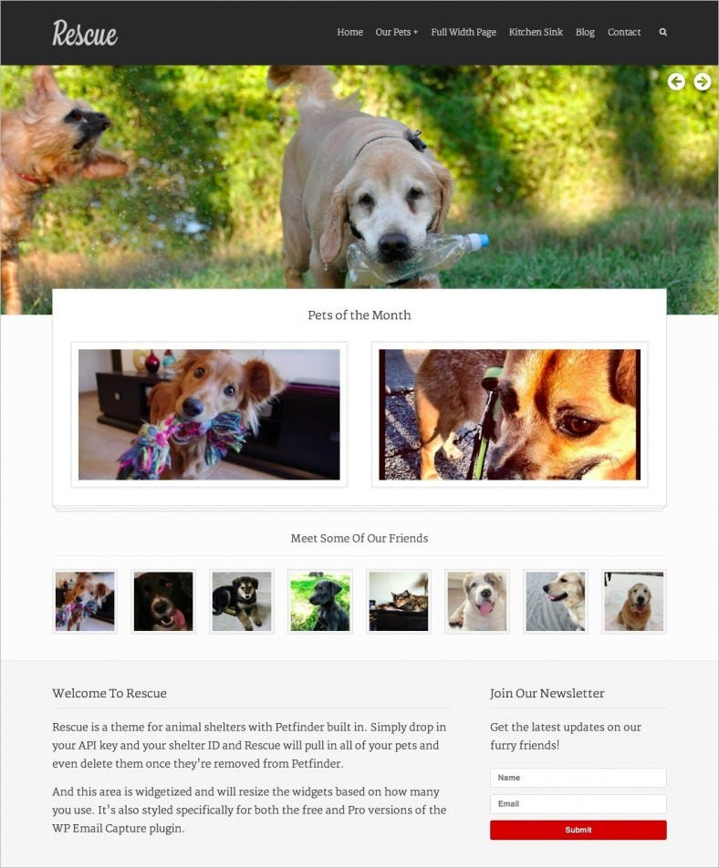 rescue animal shelter theme petfinder support 788x952