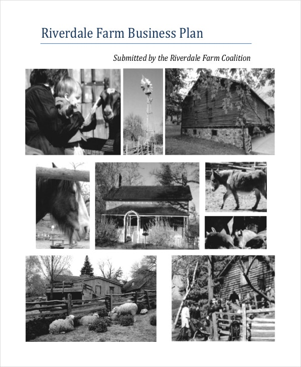 riverdale-farm-business-plan