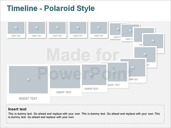 sample project timeline editable polaride template