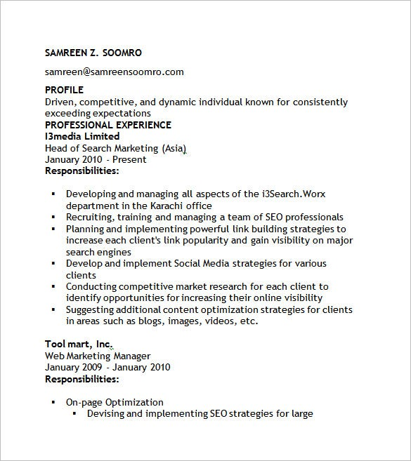 Seo Resume Template   Free Samples Examples Format Download