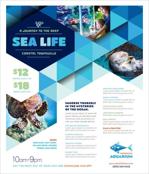 sea life advertising flyer template