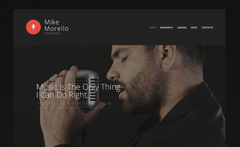 singers portfolio website template 788x482