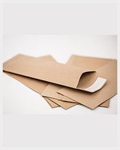 Standard-Business-Envelope-Kraft-Template