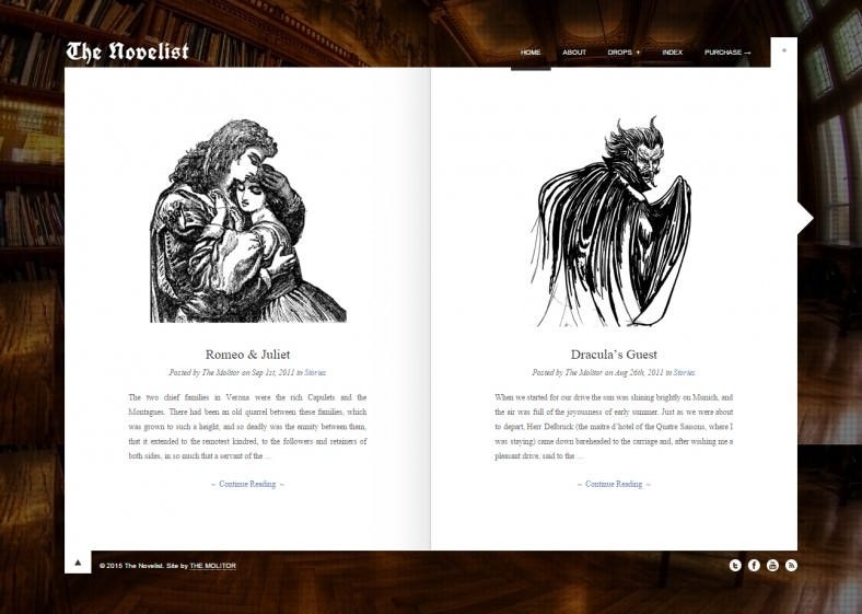 the novelist responsive wp theme for writers 788x561