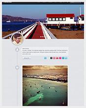 Website-Premium-Tumblr-Theme