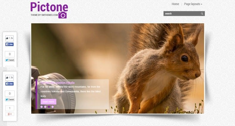 WooCommerce Supported Photography Wp Theme
