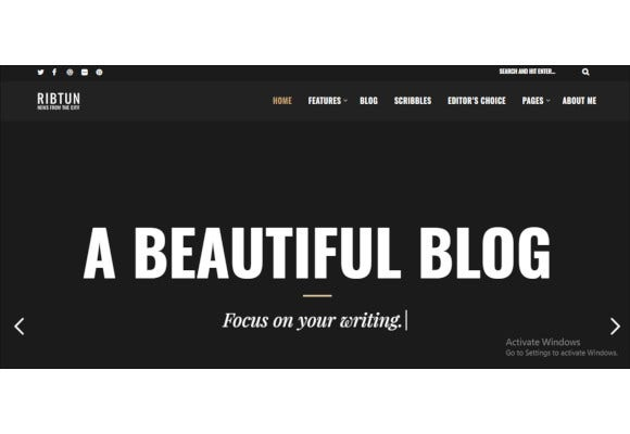 wordpress blog theme for writers