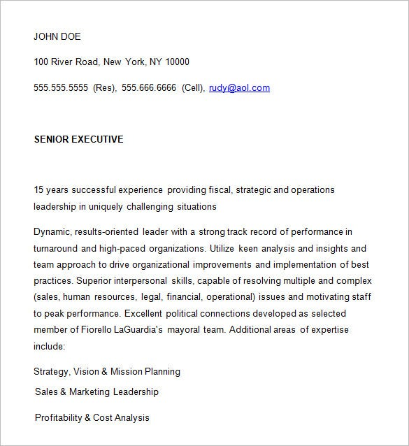 sample executive resume ceo curriculum vitae template doc
