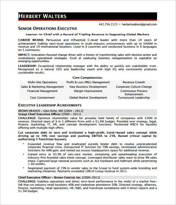 Ceo Resume Examples Insurance Executive Resume Example Executive