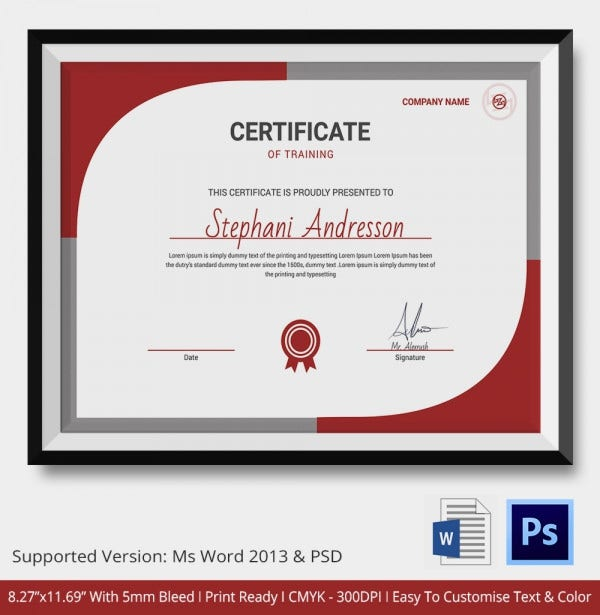 Sample training certificate certificate sample certificate training certificate template 21 free word pdf psd format yadclub Images