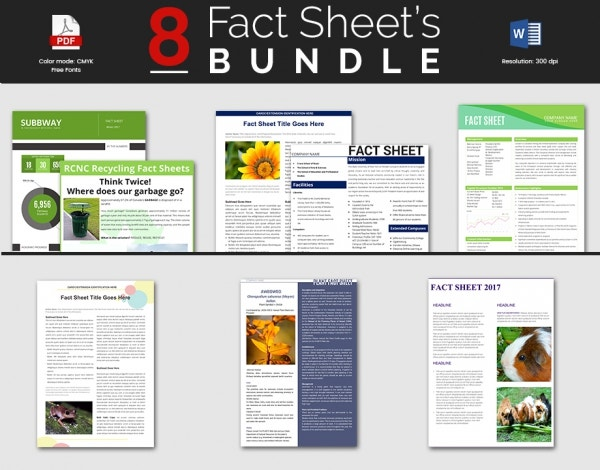 Free Fact Sheet Templates  NinjaTurtletechrepairsCo