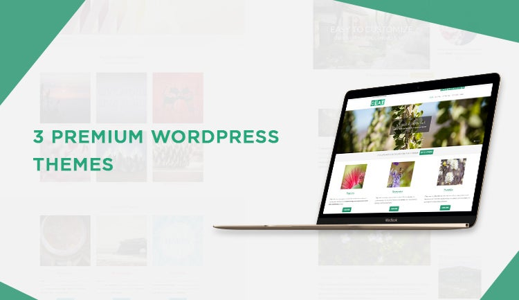 3 Premium WordPress Themes