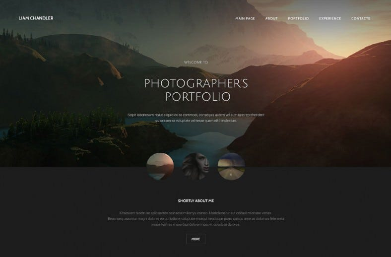 36 portfolio website themes templates free premium for Free photography website templates