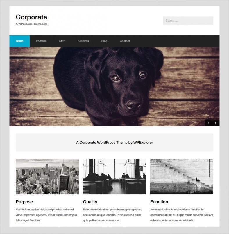 corporate minimal wordpress theme 788x804