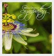 amazing psd sympathy card