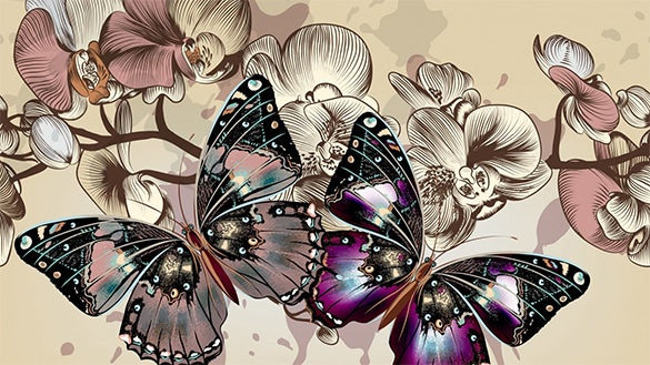 artistic butterfly background for you