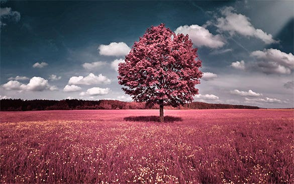 astonishing spring background free download