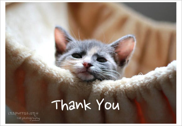 awesome thank you card for pets