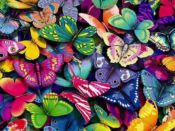 29+ Butterfly Backgrounds - Free PSD, JPEG, PNG Format ...