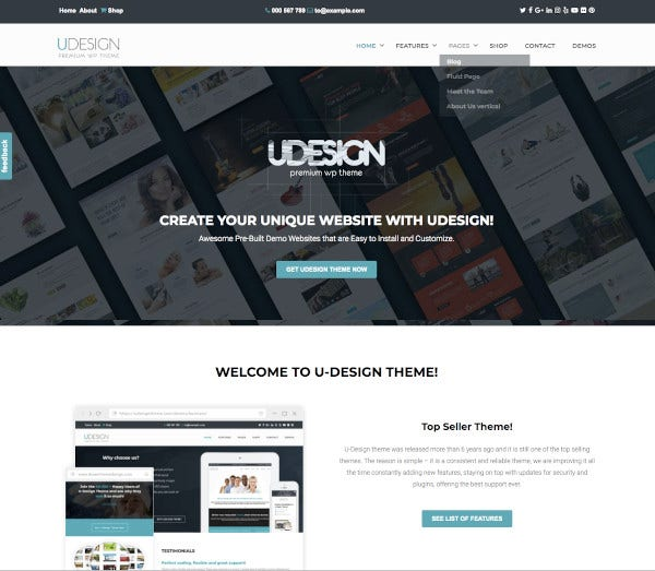 business responsive wordpress theme1