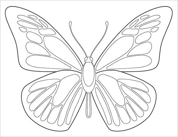 butterfly body outline template sample