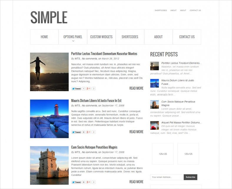 Classy Look Simple WordPress Theme For People