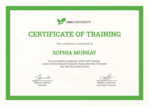 Computer Certificate Format Captivating Training Certificate Template  27 Free Word Pdf Psd Format .