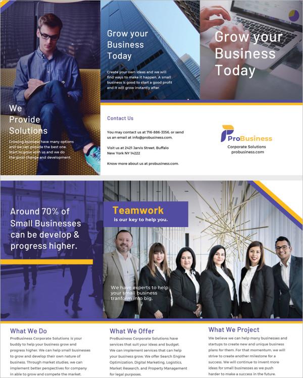 corporate-business-brochure-illustrator-template