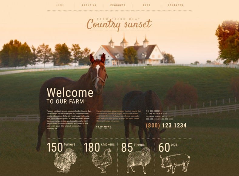 country sunset wordpress theme 788x582