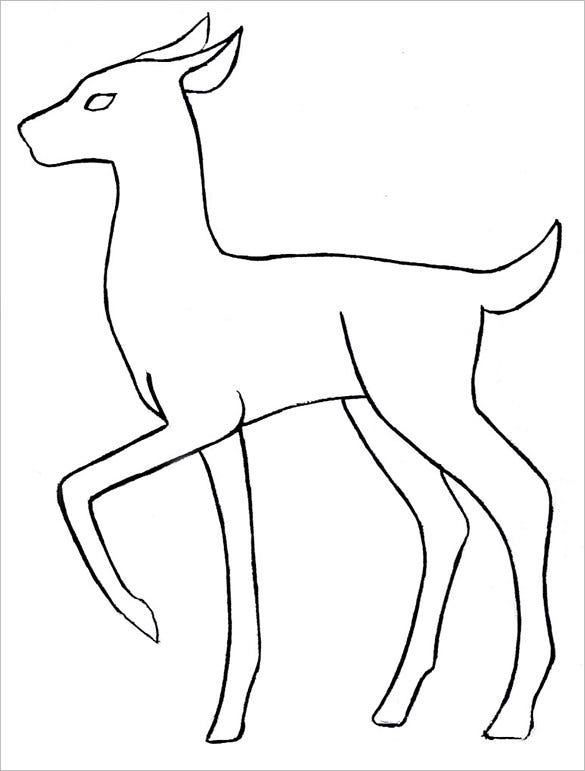 deer body outline template