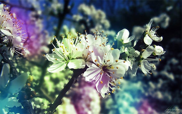 dynamic free spring background download