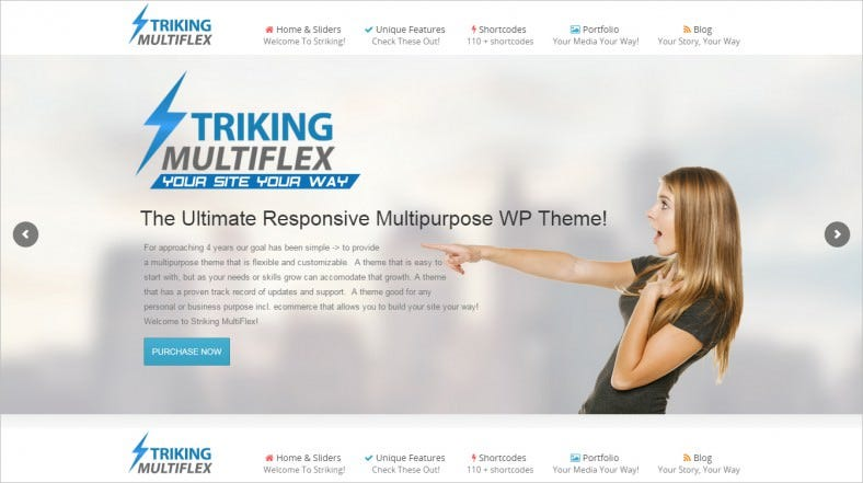 Ecommerce Business Responsive WP Theme