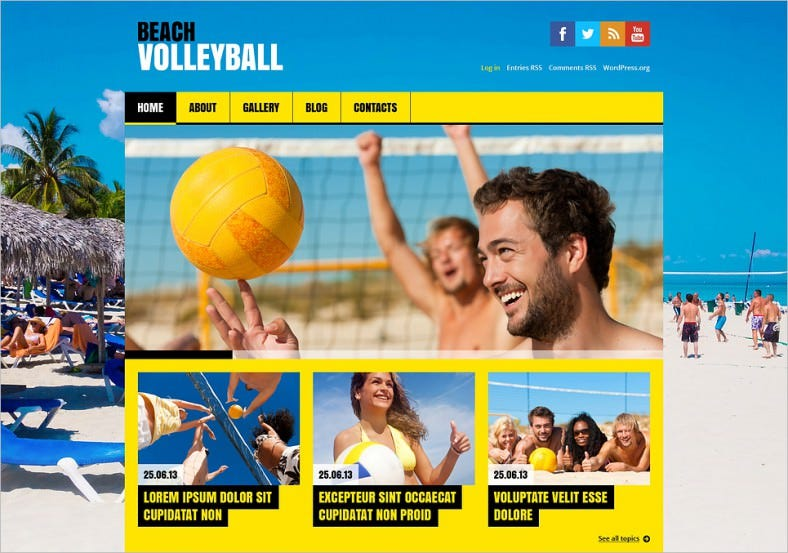 flat volleyball wordpress theme 788x553