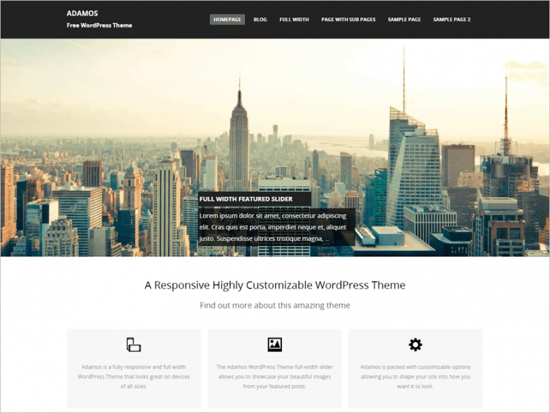 Free Highly Customizable WordPress Theme