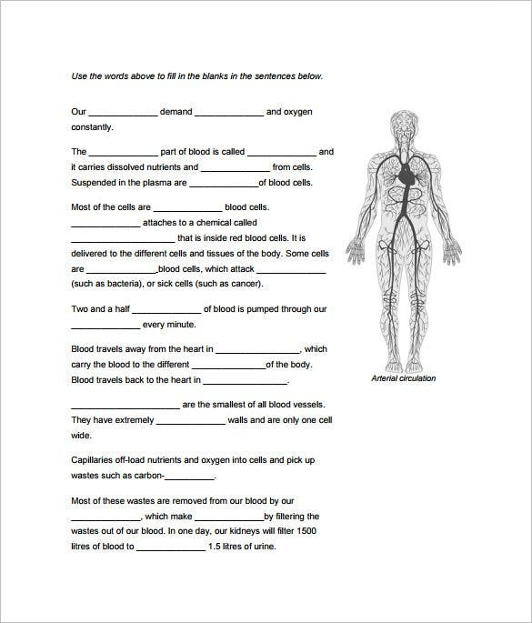 Free Human Body Classroom Outline Template Example
