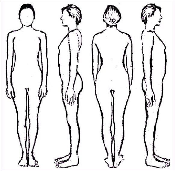 image regarding Printable Outline of Human Body Front and Back known as 18+ Overall body Determine Templates - PDF, Document Totally free Top quality Templates