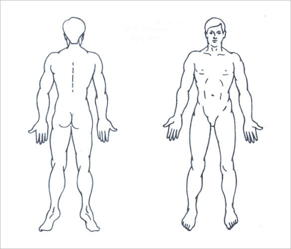 free male body outline template download