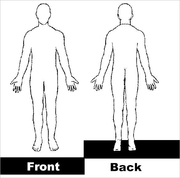 front back human body outline template