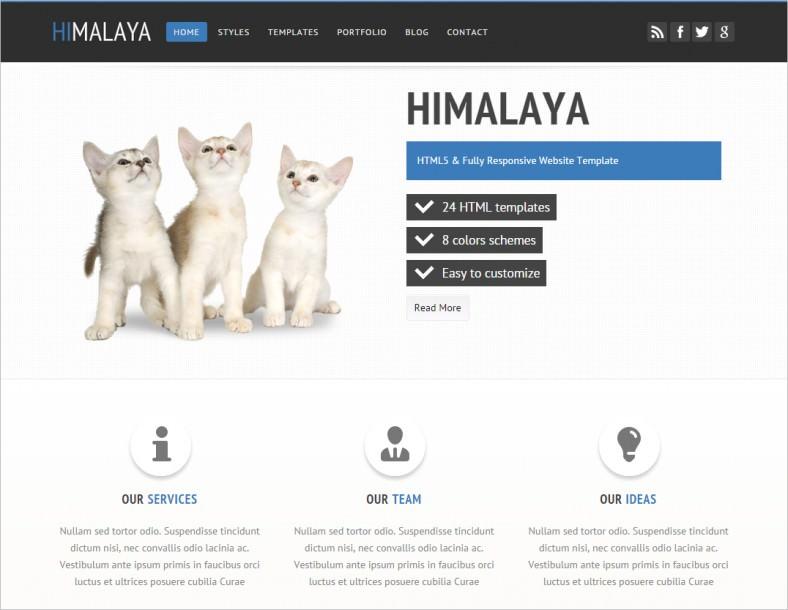 himalaya html5 responsive website template 788x610