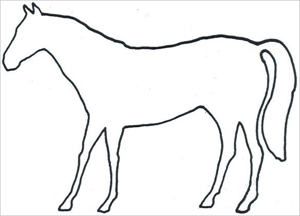 horse body outline template sample
