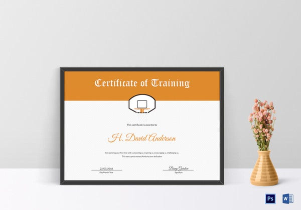 innovative-netball-training-certificate