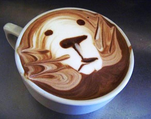 lion coffee art